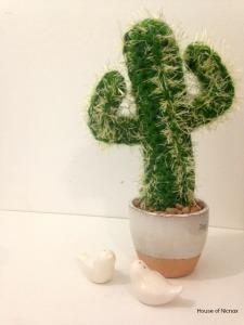 cactus a